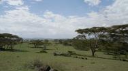 Naivasha scape P2 Stock Footage