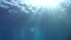 Underwater shot of sunrays breaking through the ocean surface - stock footage
