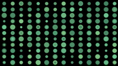 Circle dot array matrix mosaics candy,scan big data sorting analysis gene. Stock Footage