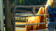 Woman and horse Stock Footage