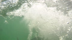 Tarpon: hitting on the surface - stock footage