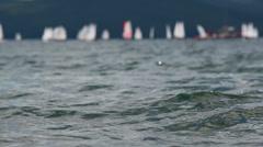Sailing boats  Stock Footage