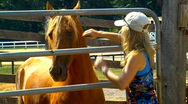 Woman and horse 04 Stock Footage