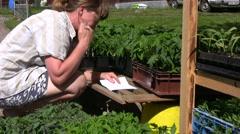 Checking tomato plants Stock Footage