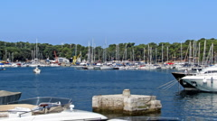 Morning in the marina Stock Footage