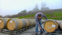 Winemaker inspects barrels Stock Footage