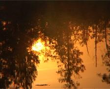 morning lake - stock footage