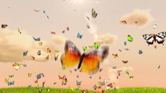Butterflies background, cg animation - stock footage