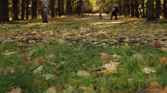 Beautiful Autumn park with people taking a walk - HD 1920X1080 Stock Footage