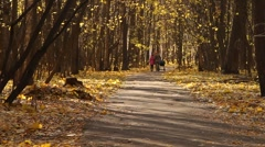 A couple walks on a path full of fallen leaves  Stock Footage