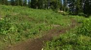 Mountain Bike 8 Stock Footage