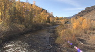 Stock Video Footage of P01262 Riparian Cottonwood Stream in Fall