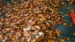 Sweeping autumn leaves - stock footage