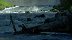 Mesa Falls Waterfall Downstream 14 - stock footage