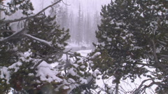 Bison River Snowfall 11 Stock Footage