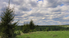 timelapse clouds above summer field and forest - stock footage