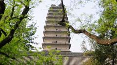 Small (lesser) Wild Goose Pagoda  Stock Footage