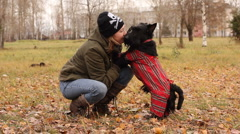 Scottish terrier in the park Stock Footage