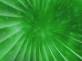 Green Splash Background Stock Footage