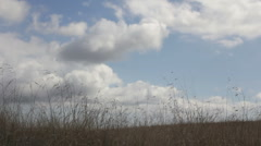 Open Field and Rolling Clouds 2 1080p Stock Footage