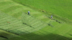Hay making amongst the Italian Dolomites, Italy  Stock Footage
