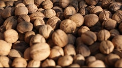 Nuts change focus Stock Footage