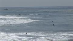 surfers in Malibu (1) - stock footage