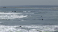 Surfers in Malibu (1) Stock Footage