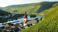 Vineyards at Zell Mosel, Mosel, Germany Stock Footage