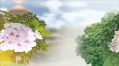 Wedding bouquets Stock Footage