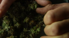 Hand pushes Marijuana bud to camera - stock footage