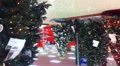 Christmas Tree in Mall Footage