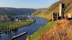 Castle Metternich, and Vineyard, Beilstein, Mosel, Rhineland,Germany Stock Footage