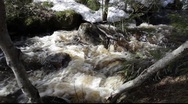 Stock Video Footage of Spring rivulets in a snow-covered forest