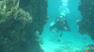 Stock Video Footage of Diver 1