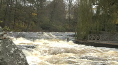 Morrum river in Blekinge county in Sweden, salmon fishing water Stock Footage