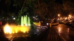 Funchal Fountain 2620 Stock Footage