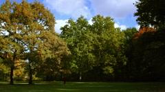 Nordic walking in autumn Stock Footage