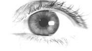 Human eye Stock Footage
