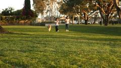 Saint Bernard Puppy Running with 2 Children Stock Footage