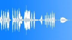 Hippopotamus vocalization Sound Effect