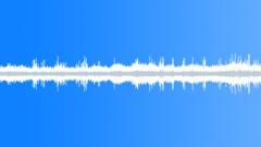 30secBirdsBeesDogLOOP - sound effect