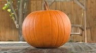 Stock Video Footage of PUMPKIN CARVING TIMELAPSE 1080 30p
