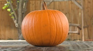 Stock Video Footage of PUMPKIN CARVING TIMELAPSE 1080 25p