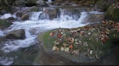 Autumn river - stock footage