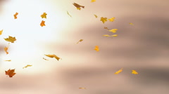 Autumn falling leaves - loopable 3d backgrounds - stock footage