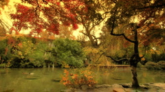 Japanese Garden Fall ARTCOLORED 01 Stock Footage