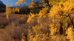 Jib move - Colorado Mountains in Fall - stock footage