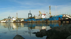 Fishing boats on the docks in the bay.  Stock Footage