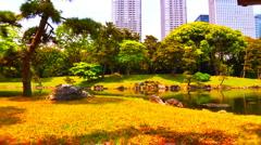 Japanese Garden ARTCOLORED 07 - stock footage